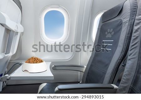 pet bowl full of food inside an airplane  window seat  where pets are welcome on board - stock photo
