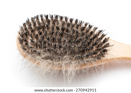 Pet brush with clump of dog hair - stock photo