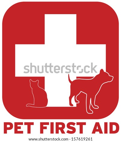 Pet First Aid
