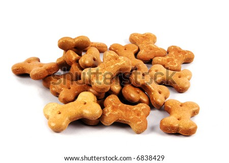 Pet food isolated on a white background. - stock photo
