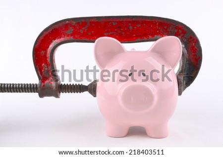 Pet Insurance - stock photo