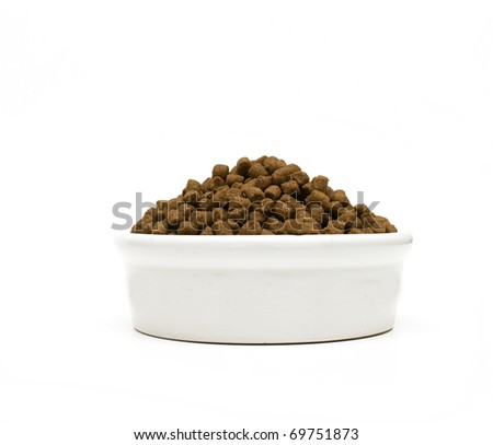 pet's dry food - stock photo