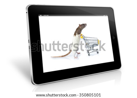 pet shop concept - stock photo