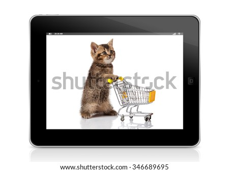 pet shop concept. cat with shopping cart. online shopping - stock photo