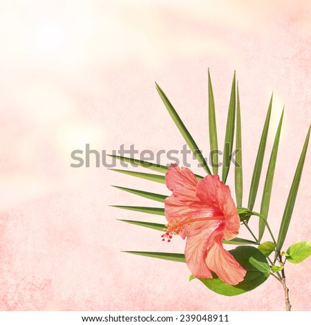 Petals blurry background with Hibiscus (Hibiscus rosa-sinensis) flower and palm leave  - stock photo