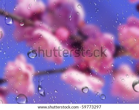Petals of flowers for a wet glass