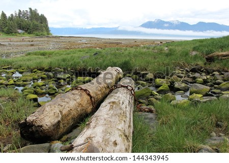Petersburg Alaska Beach Landscape - stock photo