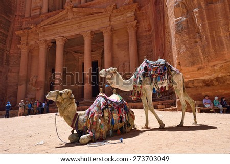 PETRA, JORDAN - APR 2, 2015: Two camels against the Treasure (El Khasneh). Petra's temples, tombs, theaters and other buildings are scattered over 400 square miles. UNESCO world heritage site