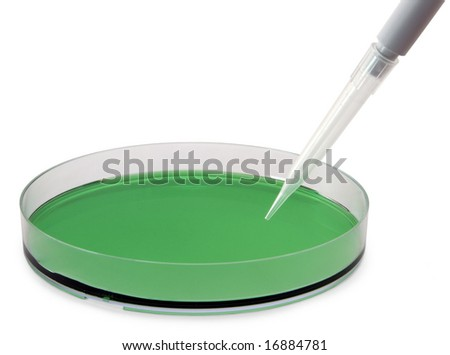 Petri dish containing a green solution, with a pipette. - stock photo