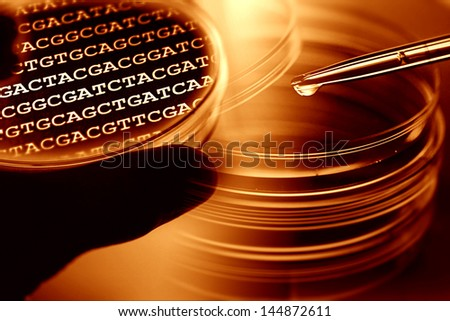 Petri dishes and table with primary nucleobases inside. Laborato - stock photo