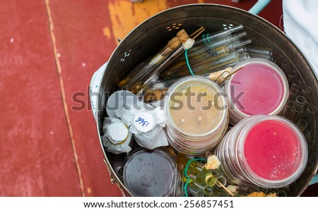 Petri dishes and test tubes stacked in metal container. Bacteria growing in Petri dish. Medical tests and research. Bacterial cultures in laboratory glassware. - stock photo