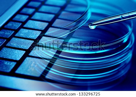 Petri dishes with pipette and computer keyboard. Modern laboratory concept. - stock photo