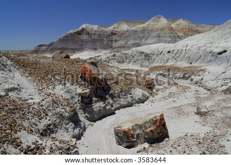 Petrified Forest National Park - stock photo