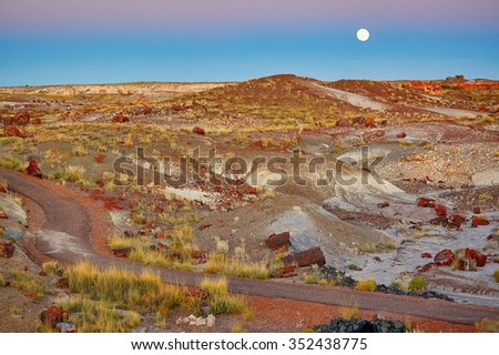 Petrified logs in the Painted desert and Petrified forest national park with full moon, Arizona, USA - stock photo