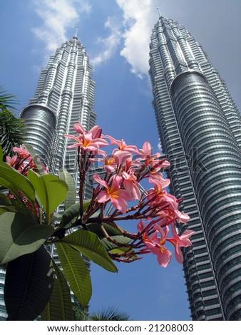 Petronas Twin Towers with flowers in the foreground, Kuala Lumpur, Malaysia - stock photo
