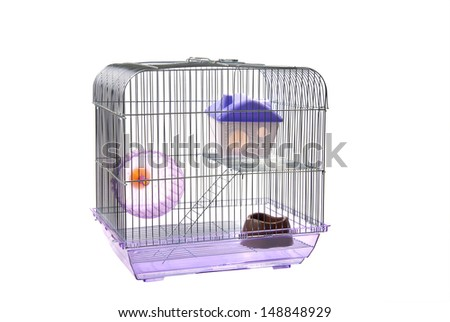 Pets cage. Isolated on a white - stock photo