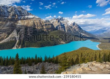 Peyto Lake, Alberta, Canada - stock photo