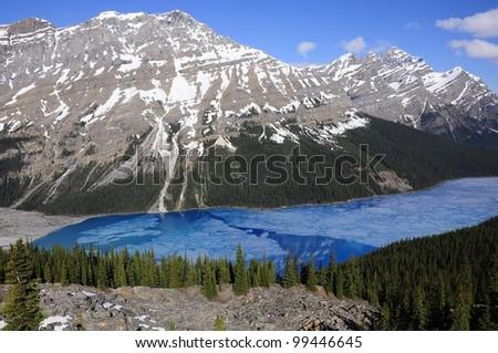 Peyto lake. Banff National park. Canada.  - stock photo