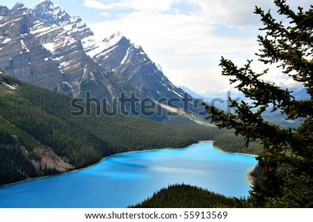 peyto lake, banff national park, canadian rockies - stock photo