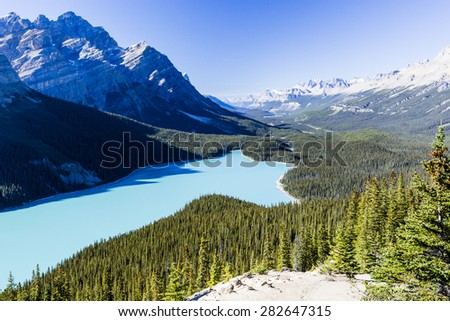 Peyto Lake is a glacier-fed lake located in Banff National Park in the Canadian Rockies. The lake itself is easily accessed from the Icefields Parkway. It was named for Bill Peyto, an early guide. - stock photo