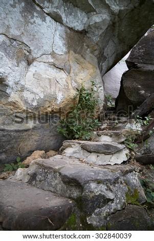 Pha Taem National Park in the Ubon Ratchathani province , Thailand - stock photo