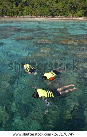 Phang Nga, Thailand-Dec 4, 2014 : Tourists snorkeling in clear water beautiful sea like a heaven at Surin island, Phang-nga Thailand  - stock photo