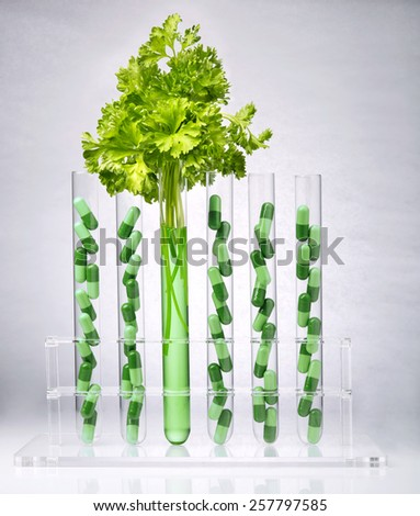 Pharmaceutical research. Herbal pills and medical plants in test tubes - stock photo