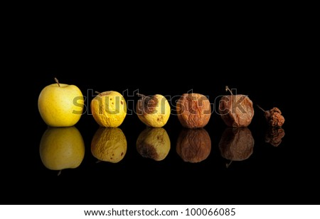 Phases of the rotting yellow apple isolated on black. - stock photo