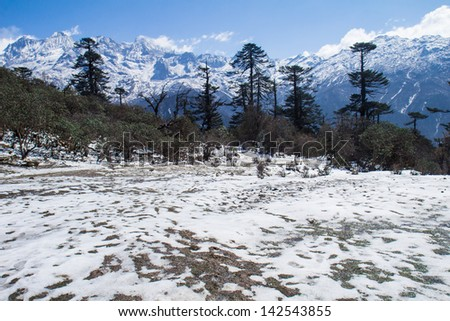Phedang camp scenic of Kanchenjunga Nation park - stock photo