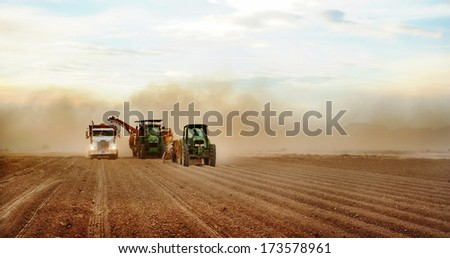 Phoenix, Arizona USA Jun. 4, 2009- Farmers and field hands use farm machinery in the field harvesting red potatoes.  The potatoes are dug by a potato combine, and  taken to a cellar for storage. - stock photo