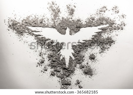 Phoenix drawing made in ash on a white background - stock photo