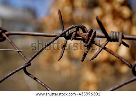 Photo barbed wire .Autumn