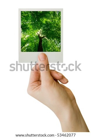 photo card blank in a hand on the white - stock photo