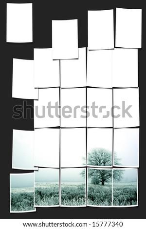 photo collage - stock photo