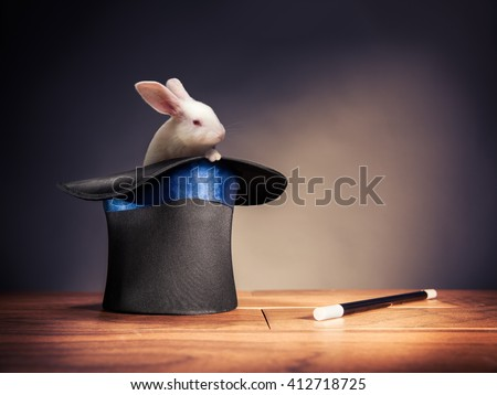 photo composite of a rabbit in a magician hat