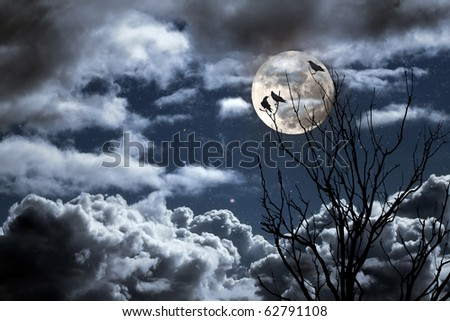 Photo composition with full moon, part of a naked tree, clouds and crow that can be used for halloween - stock photo