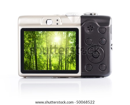 Photo display on camera LCD screen. The nature photo belongs to my own.