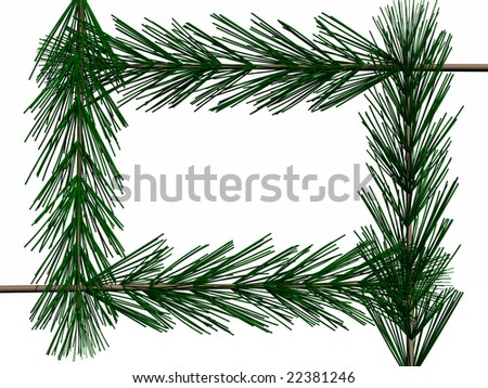 photo frame of pine branches