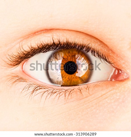 Photo Human eye close-up. - stock photo