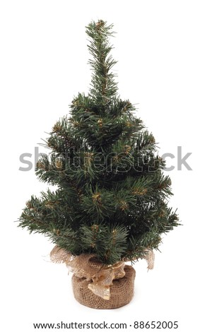 photo image of lovely fake mini christmas tree which is not decorated over white background - Christmas Trees Fake