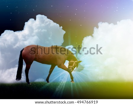 Photo manipulation of brown horse in dark with white clouds