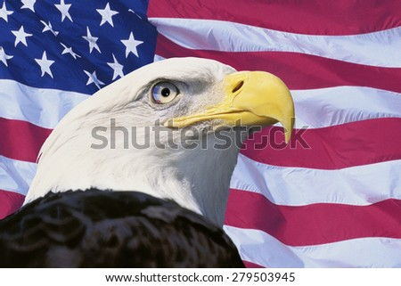 Photo montage: American flag and bald eagle - stock photo