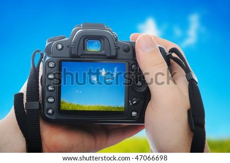 Photo nature - stock photo
