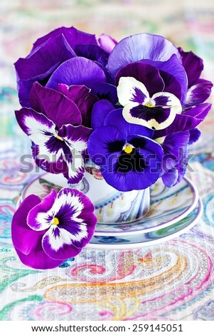 Photo of a beautiful purple pansy flowers . - stock photo