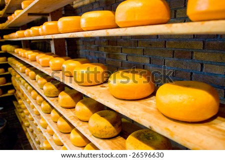 Photo of a cheese factory in holland - stock photo