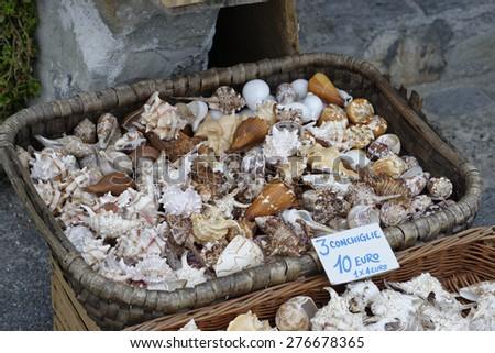 photo of a decorative shell at market  - stock photo