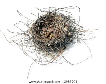 photo of a empty bird nest isolated over white background