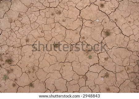 photo of a ground pattern with cracks