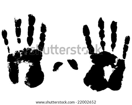 Photo of a left and right hand on a white background. - stock photo