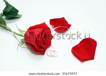 Photo of a rose and wedding rings on a white background. - stock photo